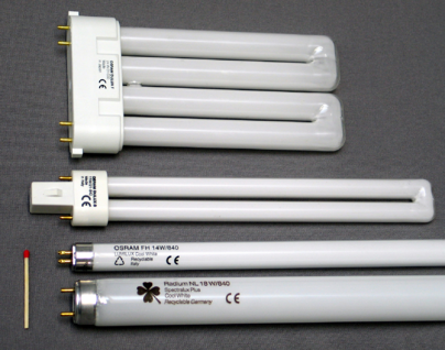 Fluorescent and Compact Fluorescent Lights