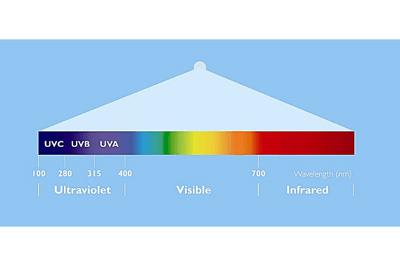 Spectrum Blog Size Graphic